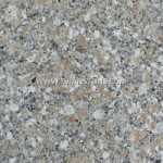 Granite Counter or Vanity Top Golden Tiger